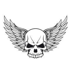 human skull tattoo vector image