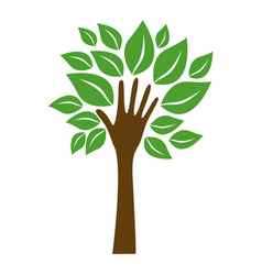 Green tree with leaves and stem in form hand vector