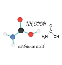 Nh2cooh carbamic acid molecule vector
