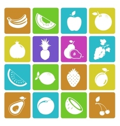 Colorful fruit icon set vector