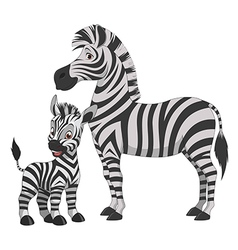 Zebra with cub vector