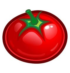 Red tomato vector