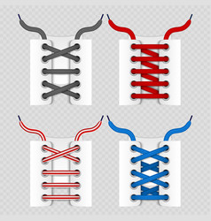 Color shoelace for footwear colored lace shoe vector