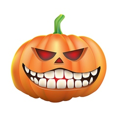 Pumpkin sneer on white background vector image