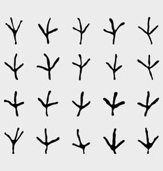 traces of birds vector image vector image