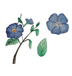 Watercolor blue flower set vector