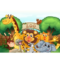 a zoo and the animals vector image vector image