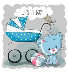 Cat with baby carriage vector