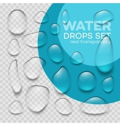 Realistic transparent water drops set vector image