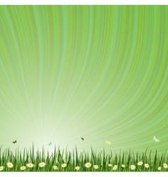 summar background vector image vector image