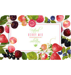 Berry horizontal banner vector