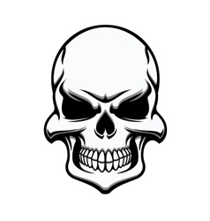 Black and white eerie human skull vector