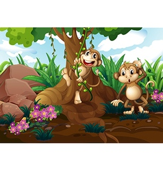 Monkeys playing under the tree vector image vector image
