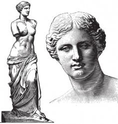 aphrodite statue vector image