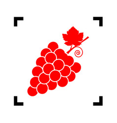 grapes sign red icon inside vector image