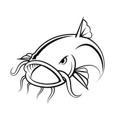 Graphic catfish on white background vector