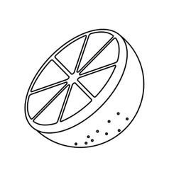 Sliced orange fruit outline vector