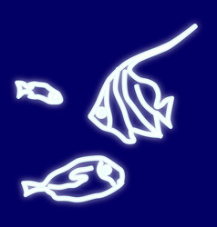 the image of the fish vector image vector image