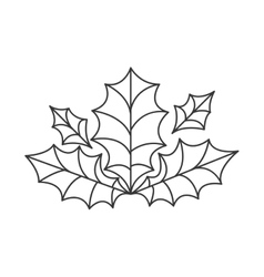 Holly berry leaves decoration vector