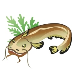 Catfish with salad food isolated vector image