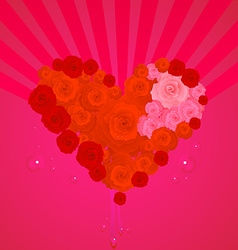 Rose Heart Valentines vector image vector image
