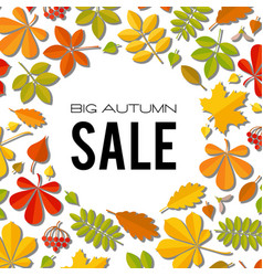 Sale banner with bright autumn leaves isolated on vector