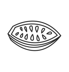 Cocoa bean doodle hand drawn line vector