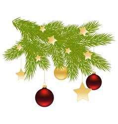 fir branch decoration vector image