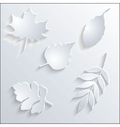 Card with paper leaves vector image