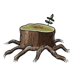 Cartoon image of big tree stump vector