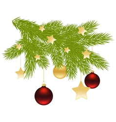 fir branch decoration vector image
