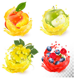 set of fruit juice splash grapes apple peach vector image vector image