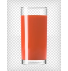 Tomato Juice in a Glass vector image