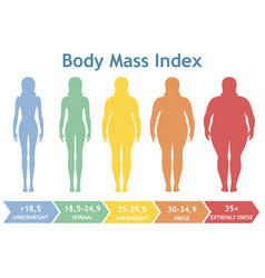 Woman silhouettes with different obesity degrees vector