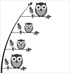 OWL FAMILY TREE vector image vector image