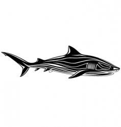 shark tattoo vector image