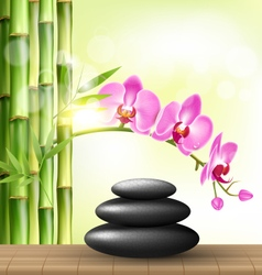 Stack of spa stones with orchid pink flowers and vector