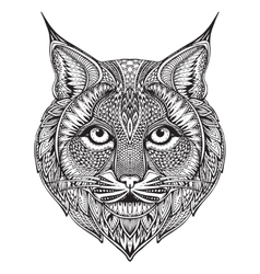 Hand drawn graphic ornate bobcat vector