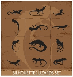 Collection reptiles and amphibians symbols set vector
