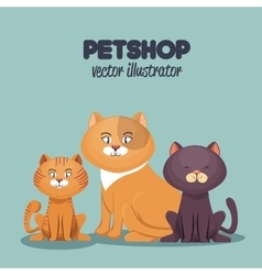 Pet shop cats and dog care mascot vector