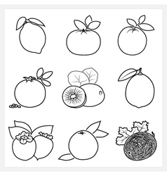 Set of fruit linear icons vector