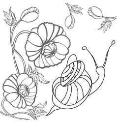 Snail and poppy black-and-white vector