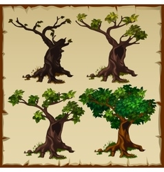 Four images of the tree with leaves and without vector