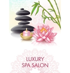 Spa Salon Poster vector image