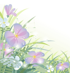 Morning flowers vector image