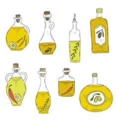 Hand-drawn bottle of oil and olives vector
