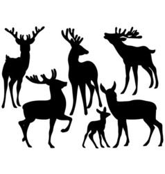 Deers Set vector image vector image