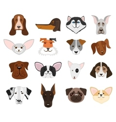 Dog and puppy heads set vector
