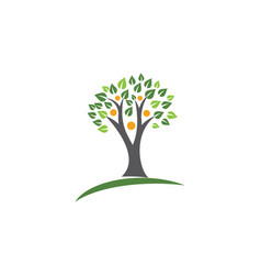Family tree logo template vector