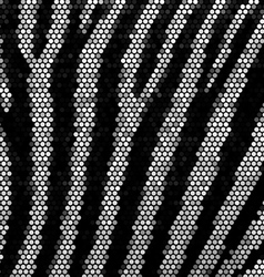 Zebra strippes mosaic background vector